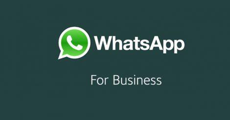 Desde Xiaomi han puesto en marcha una nueva vía de comunicación directa con sus clientes a través del servicio de mensajería de WhatsApp. De esta manera se puede ver más que patente como una aplicación como WhatsApp Business va a ser muy aceptada por compañías de todo tipo, sean grandes o pequeñas sin importar su volumen de negocio. Para los usuarios de la India de los dispositivos móviles Xiaomi ya está disponible un número de WhatsApp con el que pueden hacer todas sus consultas al servicio de atención al cliente. La campaña para introducir el servicio de mensajería a la hora de atender a clientes comienza por un país en la que la marca china está en plena expansión, y donde los clientes crecen cada día que pasa por millones. Otro dato a tener en cuenta a la hora de que una empresa como Xiaomi haya elegido a WhatsApp como vía de comunicación con sus clientes indios, es que esta aplicación es de las más usadas en el país. Se sabe que nada menos que 100 millones de usuarios dentro de la India están utilizando la aplicación de mensajería. Por el momento este servicio de atención al cliente está en fase beta, de ahí que no estén disponibles todas sus funciones.