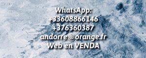 ALFA ELECTRONICA ANDORRA LA TIENDA MAS BARATA DE ANDORRA JUNTO A PYRENEES TIENDA DE ELECTRÓNICA ALFA ANDORRA SONY SAMSUNG PIONEER DJ CANON ANDORRA NIKON OLYMPUS ANDORRA Comprar electronica en andorra la tienda de electrónica más barata de Andorra ALFA ANDORRA ELECTRONICA Avda. Meritxell, 72 . AD500 Andorra la Vella (Principat d'Andorra) T.+376.817.456 . NUEVA TIENDA ALFA ELECTRONICA ANDORRA LA TIENDA MAS BARATA DE ANDORRA JUNTO A PYRENEES TIENDA DE ELECTRÓNICA ALFA ANDORRA SONY SAMSUNG PIONEER DJ CANON ANDORRA NIKON OLYMPUS ANDORRA Comprar electronica en andorra la tienda de electrónica mas barata de Andorra ALFA ANDORRA ELECTRONICA Avda. Meritxell, 72 . AD500 Andorra la Vella (Principat d'Andorra) . Venta Robot Roomba, Venta objetivos fotográficos Tokina, venta objetivos Sigma, venta Smartphones, Samsung S4, Samsung S5, Samsung Galaxy Note III, comprar IPAD AIR en Andorra, sell brand Mobile, iphone,laptop, electronic watch, Electronic cigarette, nokia iphone, apple ipad, Blackberry iphone , Hair straightener ,monster Headset,sony Headset,sony USB, Kingston U disk,CS4, G3 iphone, Sony Ericsson Mobile phone, sharp phones, iphone 4G , IPHONE 5SE, IPHONE 5C, IPAD AIR, IPHONE 6, IPAD MINI RETINA, IPAD AIR PANTALLA RETINA. iphone 7, iphone 8, iphone xr. iphone X, Galaxy s8, galaxy s9, galaxy s10, galaxy note 9, xiaomi mi8, xiaomi mi9, xiaomi redmi 7 pro, redmi by xiaomi, meizu, oppo,